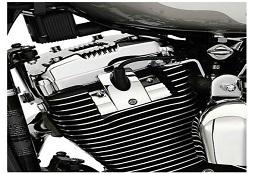 Sportster Engine Trim