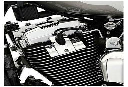 Sportster Engine Trim