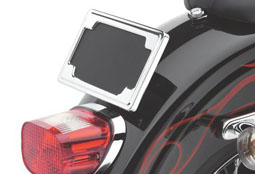 License Mounts & Accessories