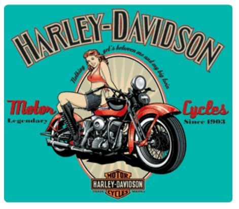 harley-davidson® legendary babe embossed tin sign. 2010361