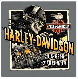Harley-Davidson® Embossed Tin Sign   Road Rage