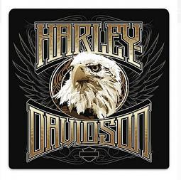 Harley-Davidson® Eagle Stare Embossed Tin Sign | Round Corners