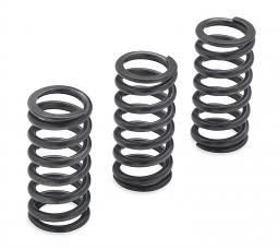 Harley-Davidson® Screamin' Eagle® Clutch Springs | 1200N | Milwaukee-Eight Engine
