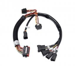 Harley-Davidson® Boom!™ Audio System Wiring Harnesses
